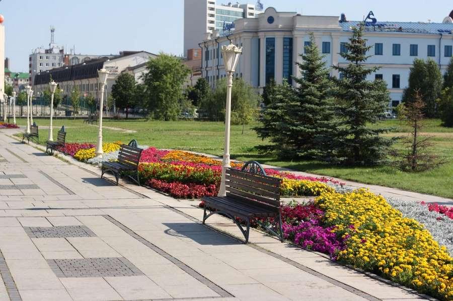 скамейки и цветы в парке